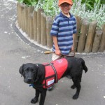 diabeticservicedog 150x150 - Dogs Trained to Detect Diabetics & Cancer