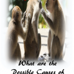 skin itch monkeys 150x150 - Possible Causes of Sudden Skin Rashes