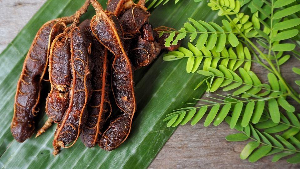 asamjava - Bringing down fever with tamarind paste