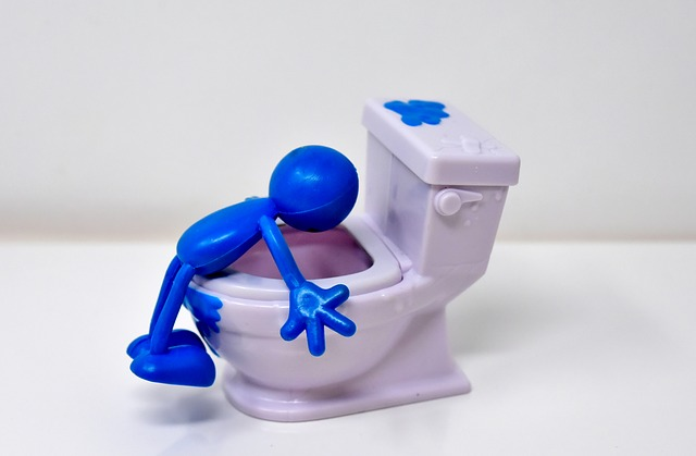 vomit toilet - Why do I feel like throwing up whenever I eat?