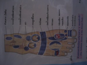 Feet-upper