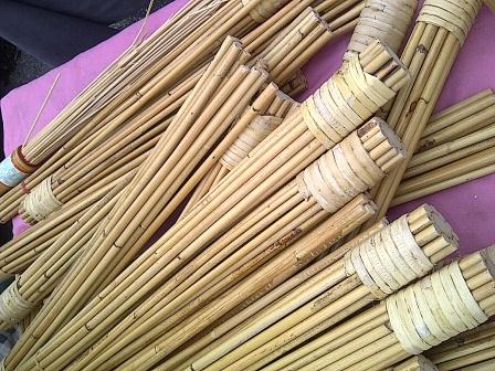 Rattan canes used for improving circulation and heal pain ...