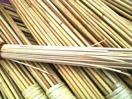 bamboo-cane-notsogood