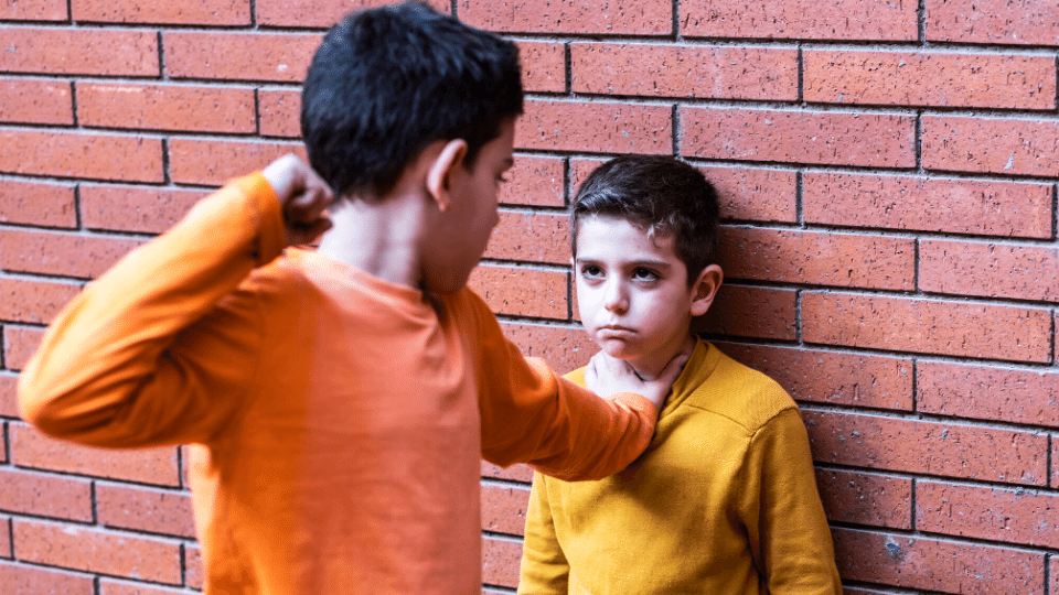 bullies - Insight into why kids turn into bullies and experience of being bullied