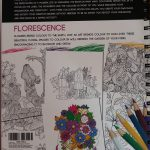 Adult Colouring Book- therapeutic, stress reducing & useful for parents/ caregivers thumbnail