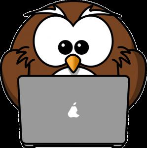 Night owl vs early bird
